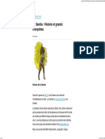 La Samba _ Histoire Et Grands Interprètes