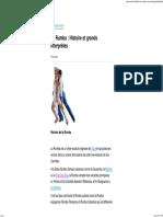 La Rumba _ Histoire Et Grands Interprètes