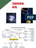 REDOX.docx
