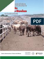 MANUAL DE BPP EN LA PRODUCCION DE CARNE DE GANADO BOVINO EN CONFINAMIENTO.pdf