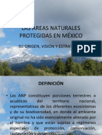 Plan de Manejo de Areas Naturales Protegidas.ppt