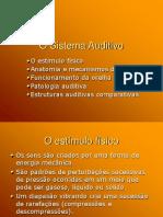 O Sistema Auditivo 2 2008_1