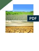tipos de suelos indentificacion visual.pdf