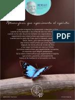 P. Dávila (Metamorfosis Que Experimenta El Espíritu)