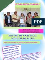 19 VIGILANCIA COMUNAL2013