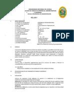 Silabo 2018-II Desarrollo Organizacional