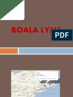 Boala Lyme 2017-2018