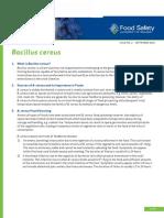Bacillus Cereus Factsheet 2016 FINAL ACCESSIBLE