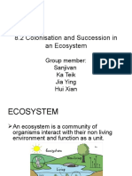 Colonisation and Succession in an Ecosystem