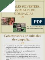 Los Animales Silvestres (Para compartir)