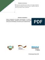 TdR Incidencia Em GRRD Municipal y de ASECSA