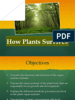 How Plants Survive