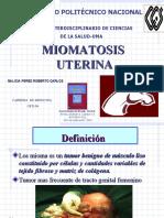 MIOMATOSIS-UTERINA