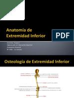 Anatomía EEII_ 2014