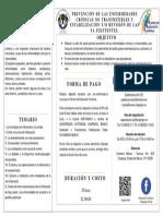 TRIPTICO enfermedades.pdf