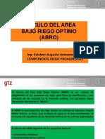 107176266-Presentacion-ABRO-Curso.pdf