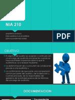 Auditoria Basica (NIA 210)