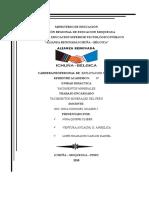 Yacimientos Minerales en El Peru