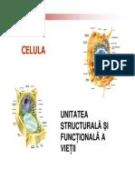 celula3.pdf