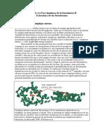 fotosintesis_2.pdf