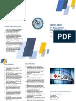 Contoh Leaflet HPK