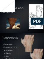 Wrist Arthroscopy Portals