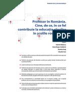 Studiu Profesor in Romania