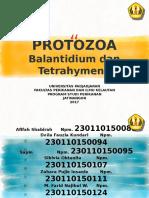 Kelompok 7 Balantidium Dan Tetrahymena