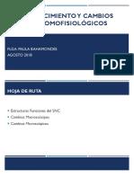 ENVEJECIMIENTO Y CAMBIOS ANATOMOFISIOLÓGICOS .pdf