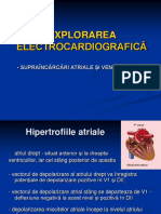 LP2. Hipertrofii hhjh