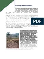 QUE SON LAS ZONAS DE AMORTIGUAMIENTO.pdf