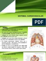 S.cardio Vascular
