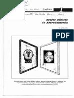 Noçoes Basicas de Neuroanatomia