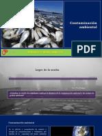 Sesión 04 - Contaminación Ambiental