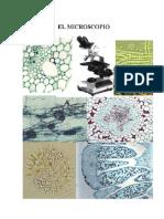 1 El Microscopio.pdf