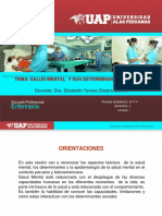1era Clase Enfermería Salud Mental PPT