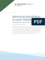 Wp Understanding Diversification En