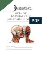 Guia AnatomIa DBIO1051
