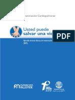 manual_RCP.pdf
