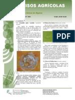 Circular Nº07_2010 ceratitis