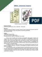 apostila_moxabustao_2.pdf