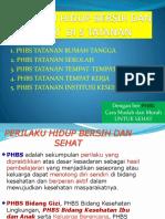 Pembahasan Phbs Di 5 Tatanan