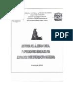 historia-del-c3a1lgebra-lineal1.pdf