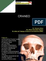 Craneo