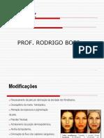 FLACIDEZ E ENVELHECIMENTO Rodrigo.ppt