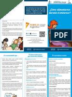 5.-Alimentacion-durante-el-embarazo-folleto.pdf