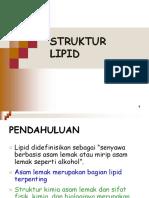 Struktur-Lipid_mei2012.pdf