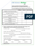 Diffusion Osmosis and Active Transport Worksheet