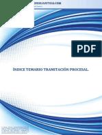 Indice temas tramitacion procesal