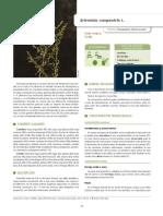 Vallès et al. 2018- IECTB Fase 2.pdf